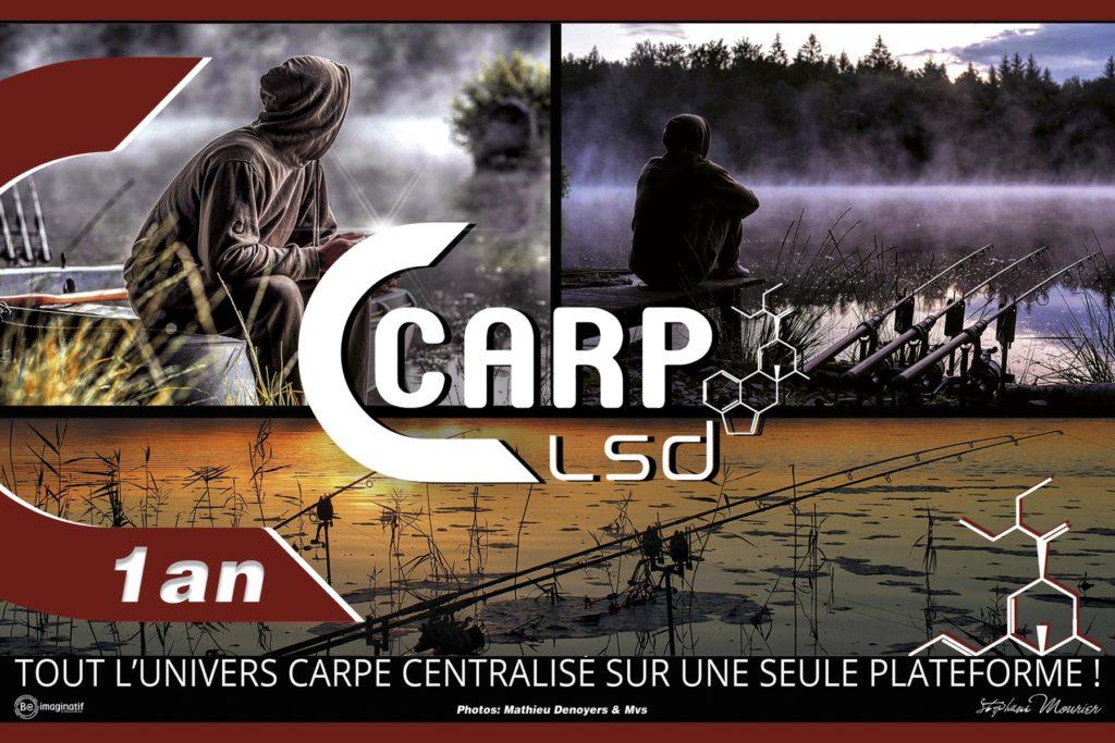 CARP LSD | LE MAGAZINE CARPE 100% GRATUIT